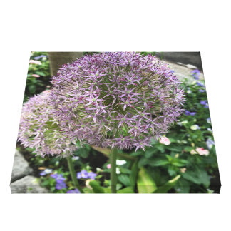 Pretty Purple Flowers New York City NYC Photo Canvas Print