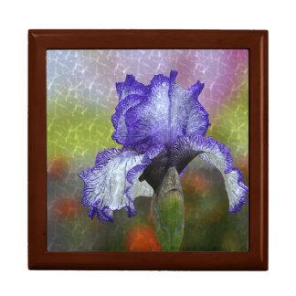 Pretty Purple Iris Gift Box