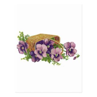 Pretty Purple Pansies in a Basket Postcard