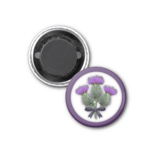 Pretty Purple Scottish Thistles with Tartan Bow Magnet