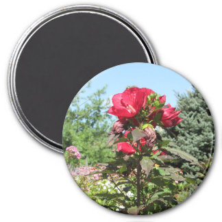 Pretty Red Flowers of the Midwest Photo Magnet