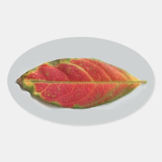 Pretty Red Leaf oval sticker, sealer, label