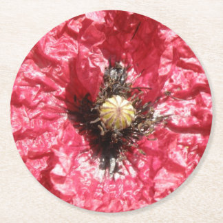 Pretty Red Poppy Flower Macro Paper Coasters