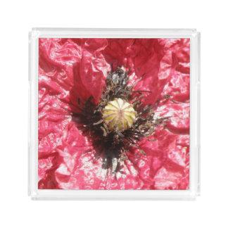 Pretty Red Poppy Flower Macro Perfume Tray