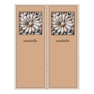 Pretty Sea Shells Bookmark Postcard