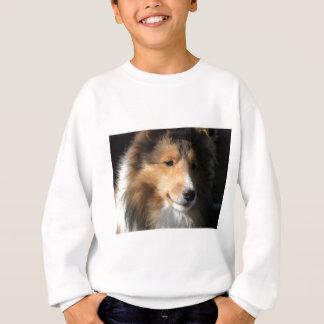 Pretty sheltie face sweatshirt