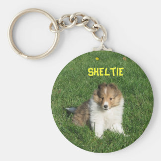 Pretty sheltie puppy sitting in grass keychain