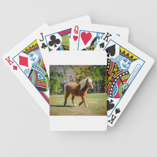 Pretty Shetland Pony Bicycle Playing Cards