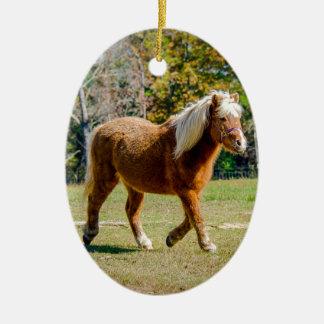 Pretty Shetland Pony Ceramic Ornament