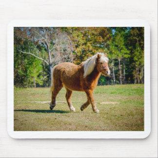 Pretty Shetland Pony Mouse Pad