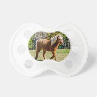 Pretty Shetland Pony Pacifier
