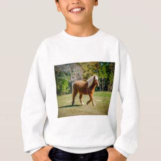 Pretty Shetland Pony Sweatshirt