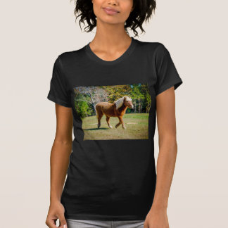 Pretty Shetland Pony T-Shirt