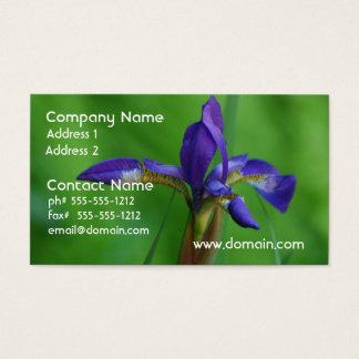 Pretty Siberian Iris Business Card