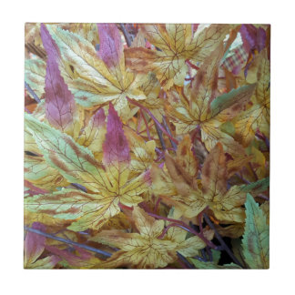 Pretty Spring Fall Leaf Combo Pattern Tile