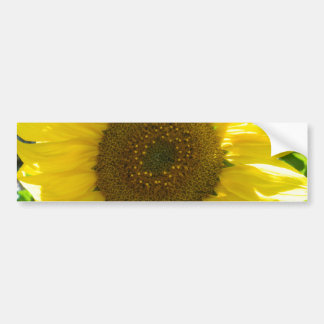 Pretty Sunflower Bumper Sticker