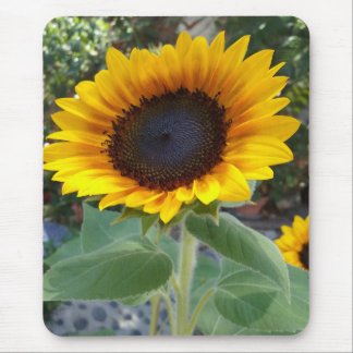 Pretty Sunflower Mouse Pad