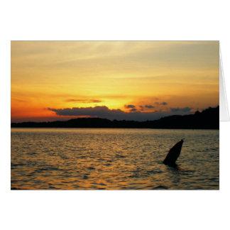 Pretty Sunset Greeting Card