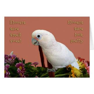 Pretty Sweet Card