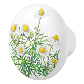 Pretty Vintage White Camomile Flowers Ceramic Knob
