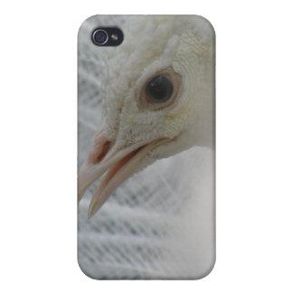 Pretty White Peacock iPhone 4 Case