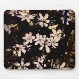 Pretty white & purple flowers mouse pad