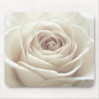 Pretty white rose mouse pad
