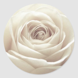 Pretty White Rose Round Sticker