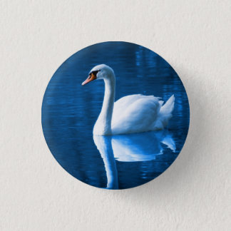 Pretty white swan floating on a blue lake 1 inch round button