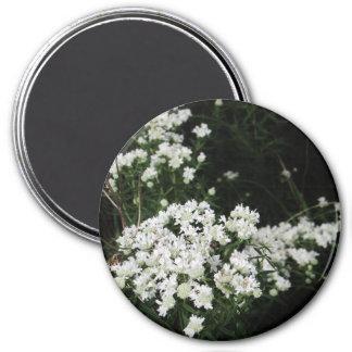 Pretty White Wildflower Magnet