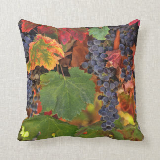 Pretty Wine VIneyard Decor Throw Pillow