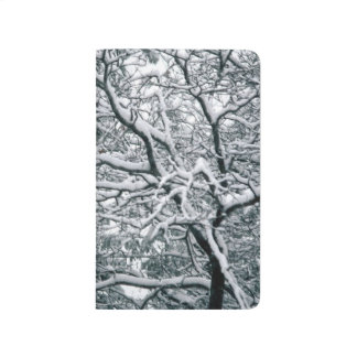 Pretty Winter Tree Snow Covered Branches Scenic Journal
