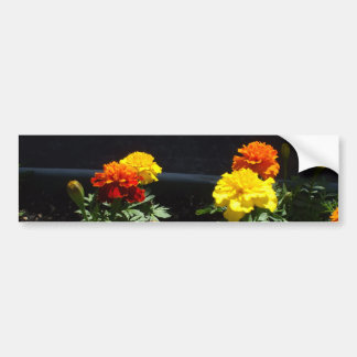 Pretty Yellow and Orange Marigolds Bumper Sticker