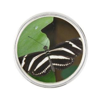 Pretty Zebra Longwing Butterfly Lapel Pin