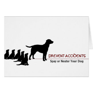 """Prevent Accidents"" (dogs) Greeting Card"