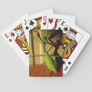 Preying Mantis Playing Cards