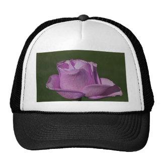 Priceless Paradise Trucker Hat