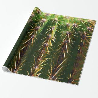 Prickly Green Cactus