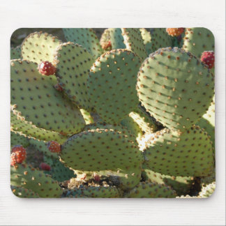 Prickly Mousepad