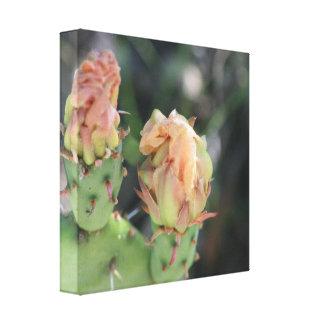 Prickly Pear Bud Canvas Print