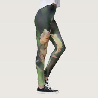 Prickly Pear Bud Leggings