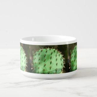 Prickly Pear Cactus Chili Bowl