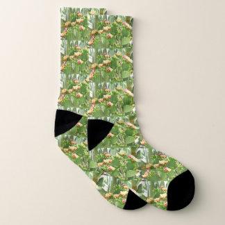 Prickly Pear  Cactus Unisex Socks 1