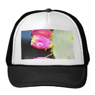 Prickly Pear Watercolor, Personalize! Trucker Hat