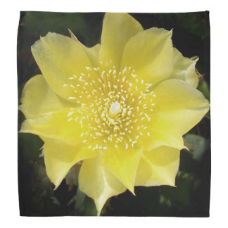 Prickly Pear Yellow Cactus Flower Bandana