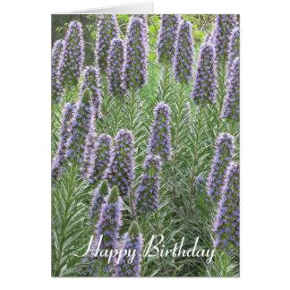 Pride of Madeira Happy Birthday Card