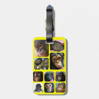 PRIMATE BABY LUGGAGE TAG
