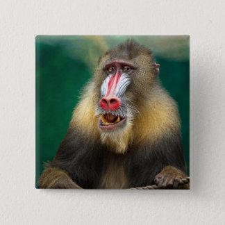 Primate Photography 2 Inch Square Button