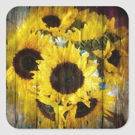 Primitive Barn Wood Western Country Sunflower Square Sticker