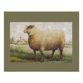 Primitive Sheep Poster